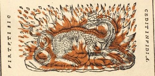 Détail de la page de titre de Guillaume Durand, Speculi Gulielmi Durandi, Lyon, à l'enseigne de la Salamandre, 1547. Bibliothèque de Droit et Science politique (Aix), Res 261